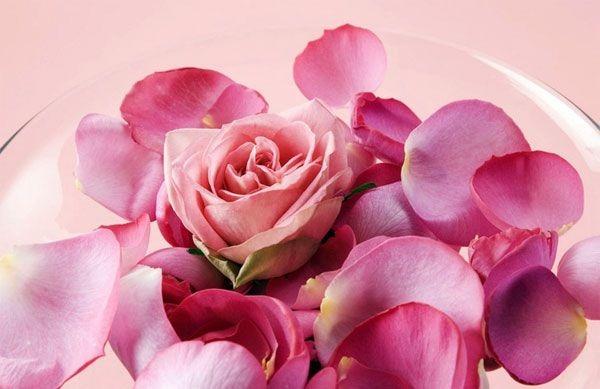Розовое золото: 10 фактов о французском розэ